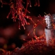قیمت خرید زعفران ایران-واردات زعفران به عمان